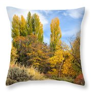 The Road To Josie's Cabin Throw Pillow