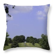 The Road To Lynchburg From Appomattox Virginia Throw Pillow by Teresa Mucha