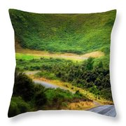The Road To Milford Sound Throw Pillow