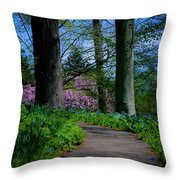 The Road To Peace And Quiet Throw Pillow