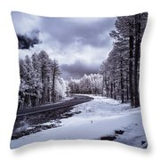 The Road To Snow Throw Pillow