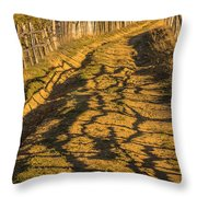 The Road To The Pasture Throw Pillow