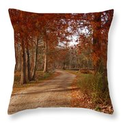 The Road Untraveled Throw Pillow