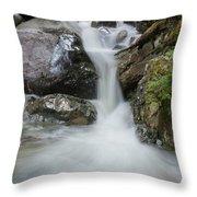the Rock Falls Throw Pillow
