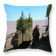 The Rocks At Hopewell Cape Throw Pillow