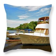 The Rondout At Eddyville Throw Pillow