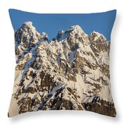 The Rooster Comb Throw Pillow