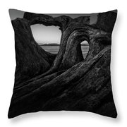 The Roots Of The Sleeping Giant Bw Throw Pillow