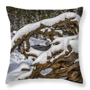 The Roots Of Winter Throw Pillow