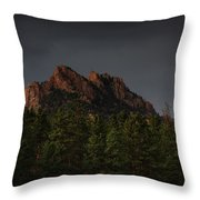 The Rugged Beauty Of Long Scraggy Throw Pillow