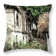 The Ruined Cottage Throw Pillow