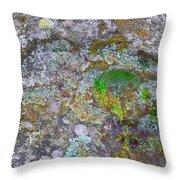 The Sacred Mountain Throw Pillow