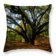 The Sacred Oak Throw Pillow by David Lee Thompson