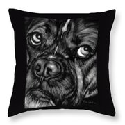The Sad Boxer Throw Pillow