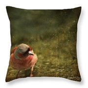 The Sad Chaffinch Throw Pillow