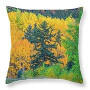 The Sanctity Of Nature Reified Through A Photographic Image  Throw Pillow