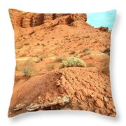the Scenic Drive III Throw Pillow