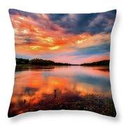 The Scenic Elbe Throw Pillow