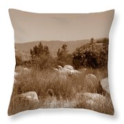 The Scenic Route Throw Pillow