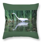 The Search For Food Continues Throw Pillow