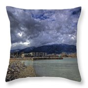 The Seasons Sandpoint Throw Pillow
