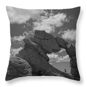The Secret Arch Throw Pillow