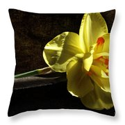 The Secrets Within Throw Pillow