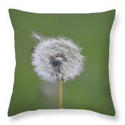 The Seedling Throw Pillow