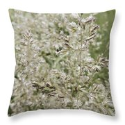 The Seedy Side Throw Pillow