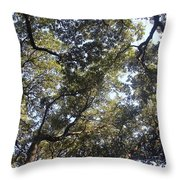 The Shade  Throw Pillow