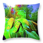 The Shine Of Fdr Throw Pillow