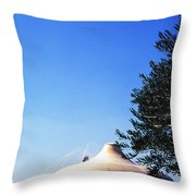 The Shrine Of The Book  Throw Pillow