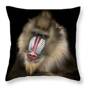 The Shrink Throw Pillow