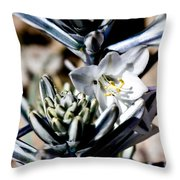 The Shy Desert Lily Throw Pillow