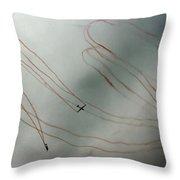 The Silent Flight Throw Pillow