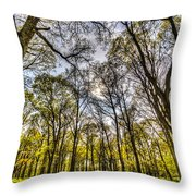 The Silent Forest  Throw Pillow