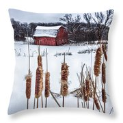 The Sinking Barn Throw Pillow