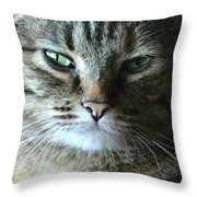 The Skeptic Throw Pillow
