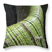 The Skin You're In Throw Pillow