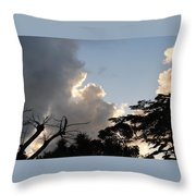 The Sky And The Trees Throw Pillow