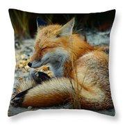 The Sleepy Fox Throw Pillow