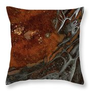 The Slowly Evolving Dream Throw Pillow