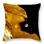 The Small Follower  Throw Pillow