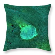 The Smallest Universe Throw Pillow