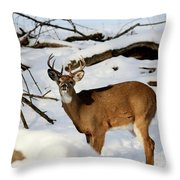 The Smell Throw Pillow