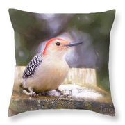 The Smiling Woodpecker  Throw Pillow