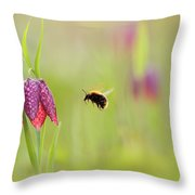 The Snake's Head And The Bumblebee - Fritillaria Meleagris Throw Pillow