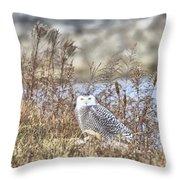 The Snowy Owl Throw Pillow