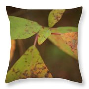 The Soft Intensity Of Fall 6210 H_2 Throw Pillow
