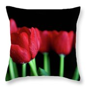 The Softer Tulips Throw Pillow by Tracy Hall